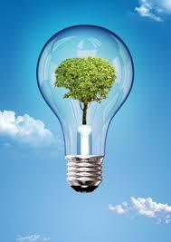 lightbulbgreentree